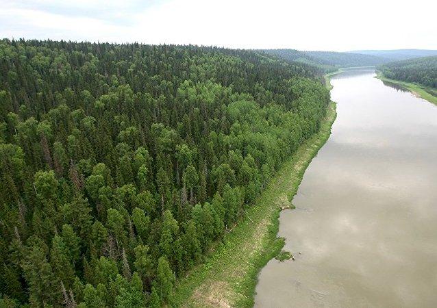 俄国防部:西伯利亚旧派信徒传授中国军人原始森林生存技能