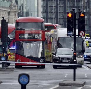 伦敦警方在汽车撞人事件后又逮捕一人