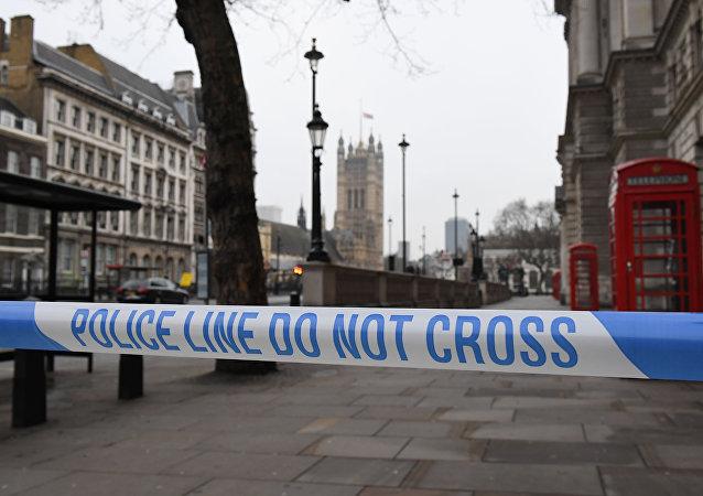 """外媒:""""伊斯兰国""""武装分子声称对发生在伦敦的恐袭负责"""
