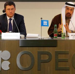 俄能源部长14日拟与沙特能源大臣举行会晤/资料图片/