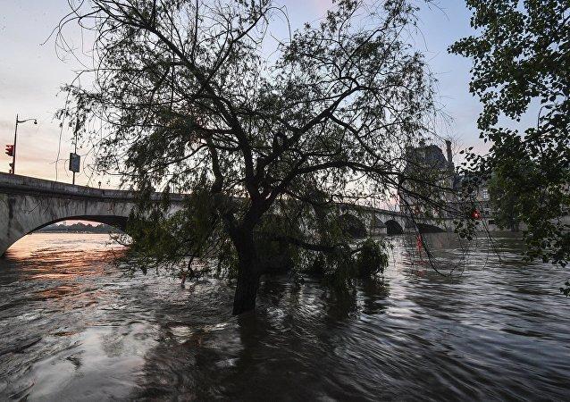 科学家:本世纪末欧洲部分地区或被洪水淹没