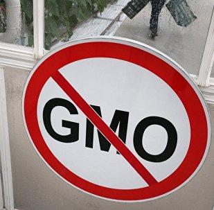 科学家:俄罗斯未来100年可以没有转基因食品