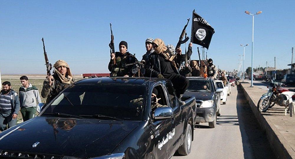 伊斯兰国武装分子
