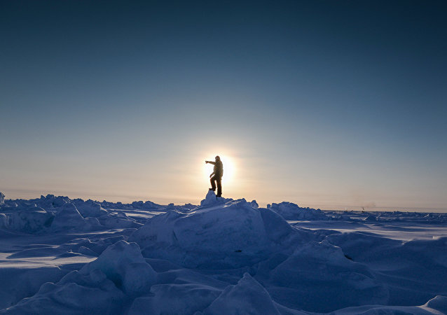 俄远东联邦大学提议亚太地区各高校共同研究北极问题