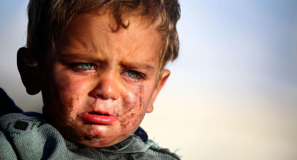 学者们介绍哪些国家的宝宝最爱哭