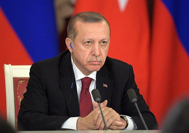 土耳其总统否认美国保证收回提供给叙库尔德人的武器