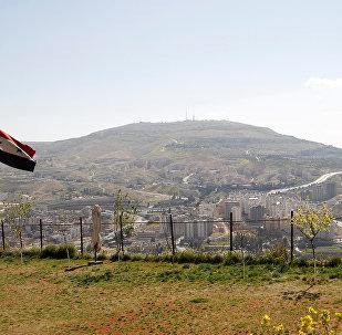 消息人士:最后一批武装分子撤离叙扎巴达尼市