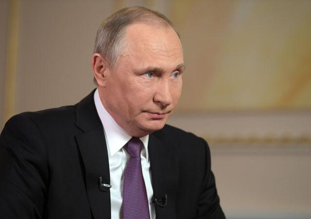 普京:政府将继续完善反腐条例