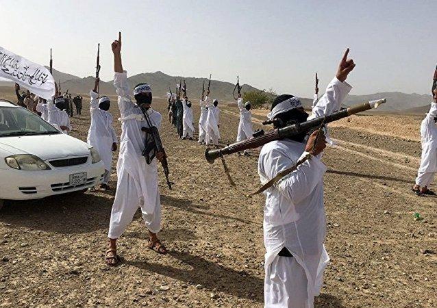 """""""塔利班""""的武装分子"""