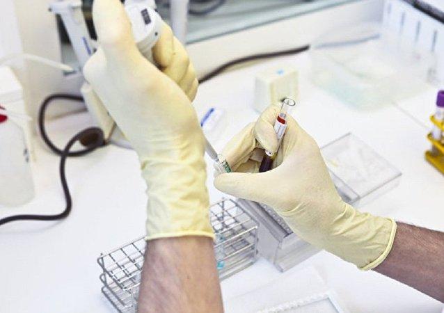俄滨海边疆区查获3吨携带禽流感病毒基因组的火鸡肉