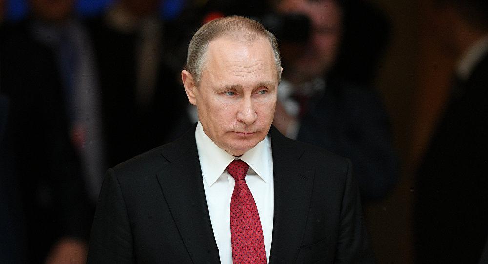普京就安达曼海空难向缅甸总统致电慰问