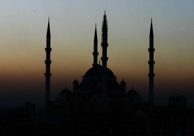 在土耳其呼籲穆斯林不要用左手吃東西