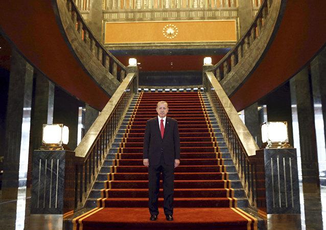 Turkish President Recep Tayyip Erdogan poses Ak Saray presidential palace