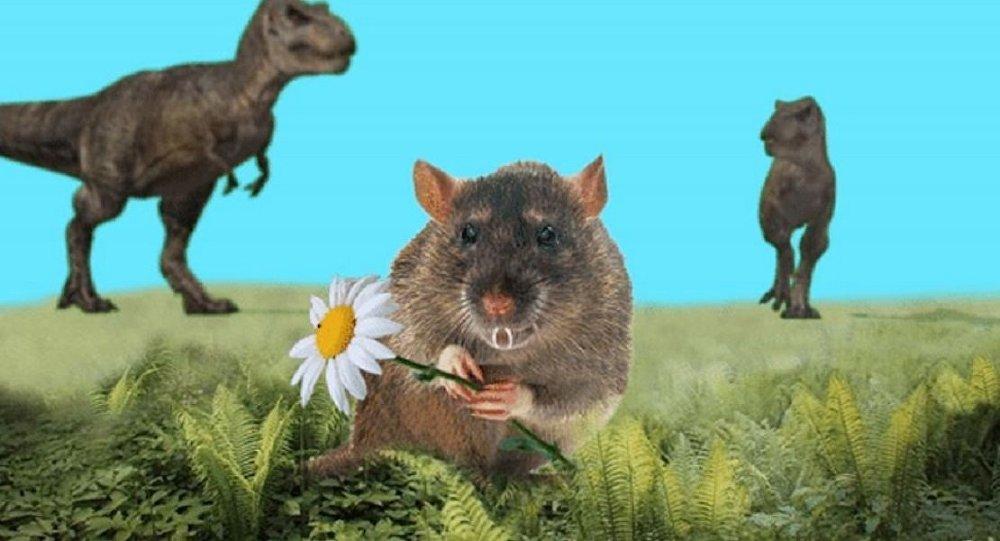 俄科学家发现远古哺乳动物新物种
