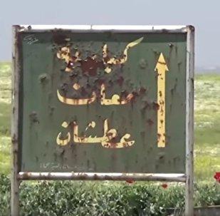视频:叙军在哈马省北部确立控制权