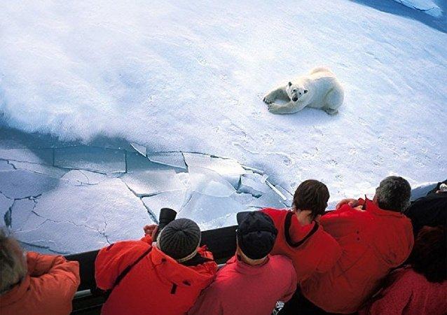 俄总统特使:俄无意让出在北极科研领域的领先地位