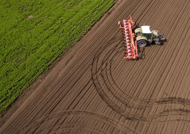 研究:俄近一半農業土地未得到利用