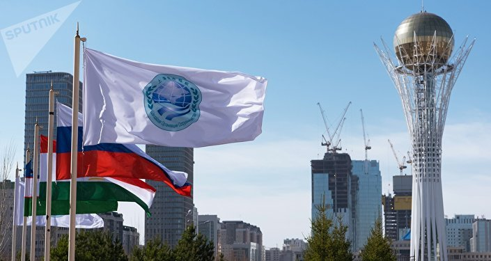 上合組織國家間的經濟合作只能是互利共享
