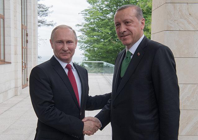 埃尔多安:俄土联合措施能够影响中东局势