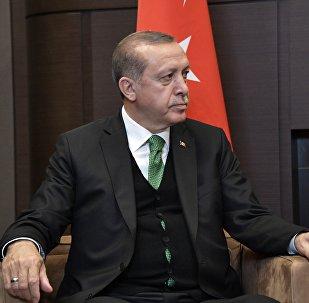 土耳其总统:设立紧张缓和区能解决叙利亚现存的一半问题