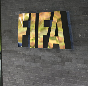世界杯组委会:国际足联9月底视察举办城市
