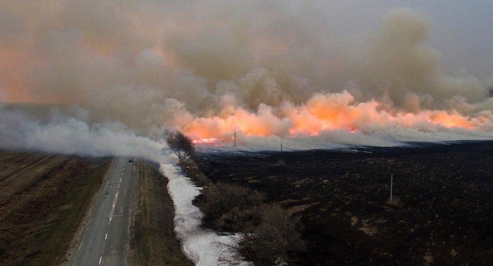 俄远东森林火灾一昼夜毁林1600多公顷 - 俄罗斯卫星