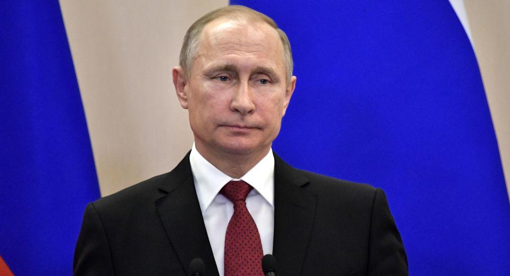 普京批准有关2017年联合会杯及2018年世界杯期间观赛人员免签的法案
