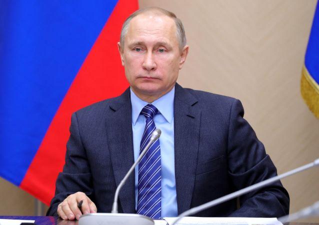 克宫:普京10日将在索契主持有关加密货币的会议
