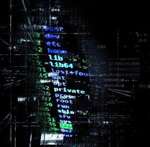 媒体:英国少年黑客接触到美国在阿富汗和伊朗情报活动计划