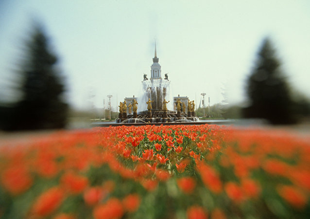 莫斯科全俄展览中心五月底将有逾80万枝郁金香绽放