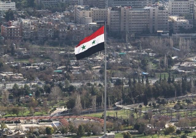 叙政府代表:大马士革同意讨论宪法不等于同意讨论过渡政府