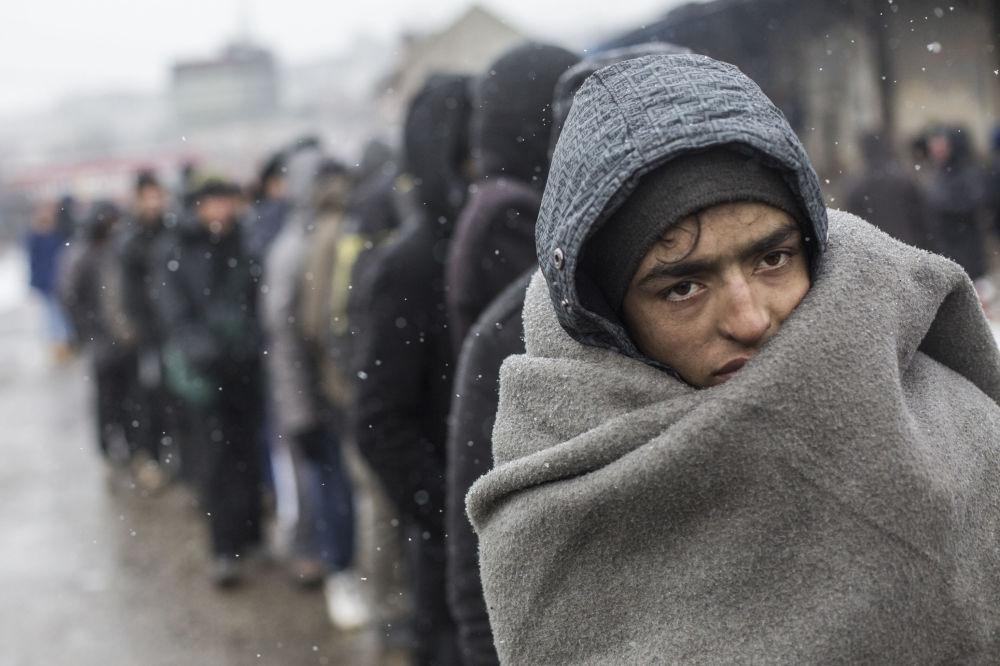 《贝尔格莱德的难民》,西班牙摄影师亚历杭德罗·马丁内斯·韦雷斯(Alejandro Martinez Velez)