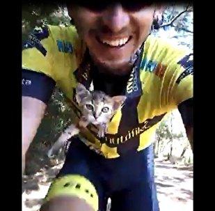 自行車手撿流浪貓放懷裡