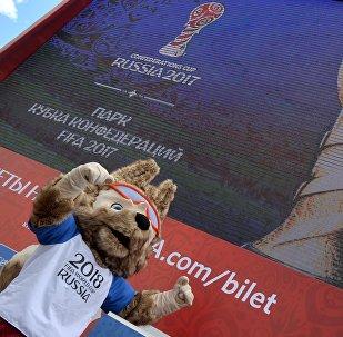 俄合作署:在中国将开设2018足球世界杯球迷信息中心