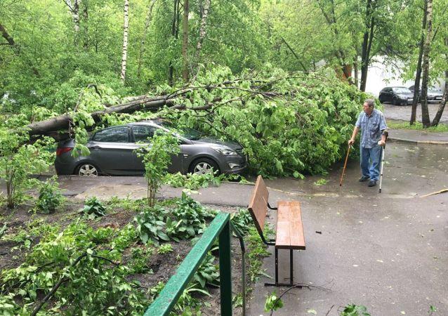 莫斯科暴风