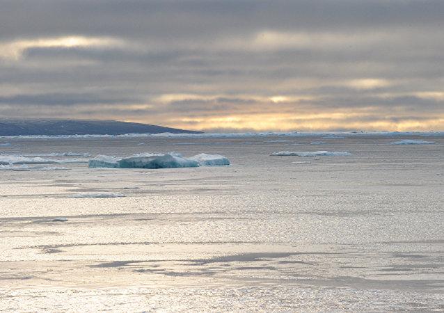 赛艇奥运冠军晒出自己横渡北冰洋12天后两个手掌的照片
