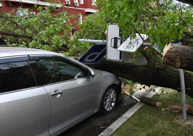 莫斯科暴风导致108人受伤住院 2千汽车受损