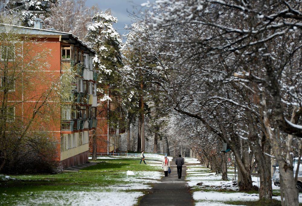 新西伯利亚降雪