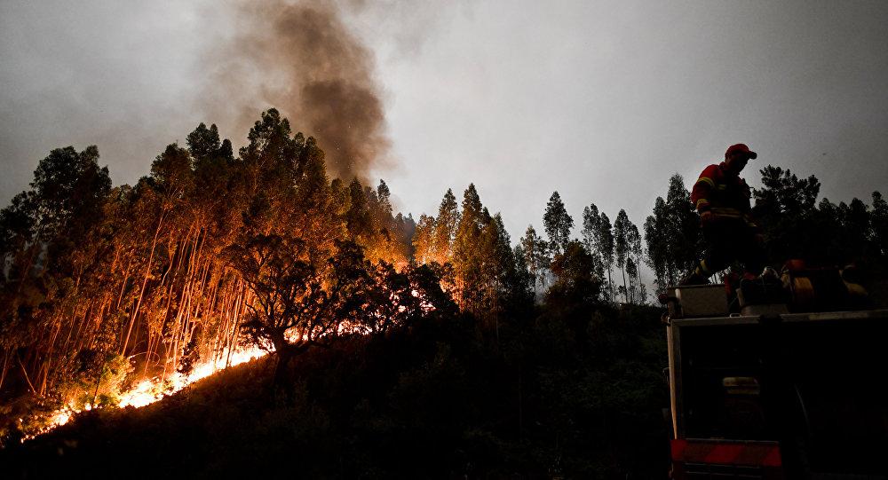 防局表示,希腊已向欧盟请求给予国际援助,特别是调派数架CL-415消防飞机以扑灭森林大火。 自8月初,希腊全境发生数起森林大火,消防力量不足。8月14日新增森林火灾91起,8月15日55起,之后又新增33起。 希腊若干地区因火灾启动了紧急情况应急机制。火灾造成数万公顷的森林被烧毁,其中包括雅典附近森林,雅典全市受到大火浓烟的影响。 塞浦路斯表示,将派遣60人的消防队前往希腊协助。法国因国内发生多起火灾拒绝向希腊提供援助。 据媒体报道,希腊空军共有18架Canadair —11消防飞机和7架CL