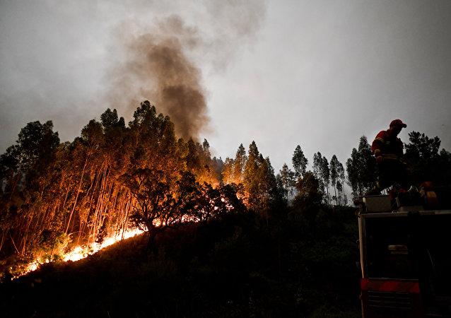 葡萄牙遭遇嚴重森林火災出動近1700名消防員參與滅火