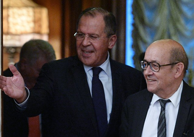 拉夫罗夫:俄法确定推动合作的具体办法