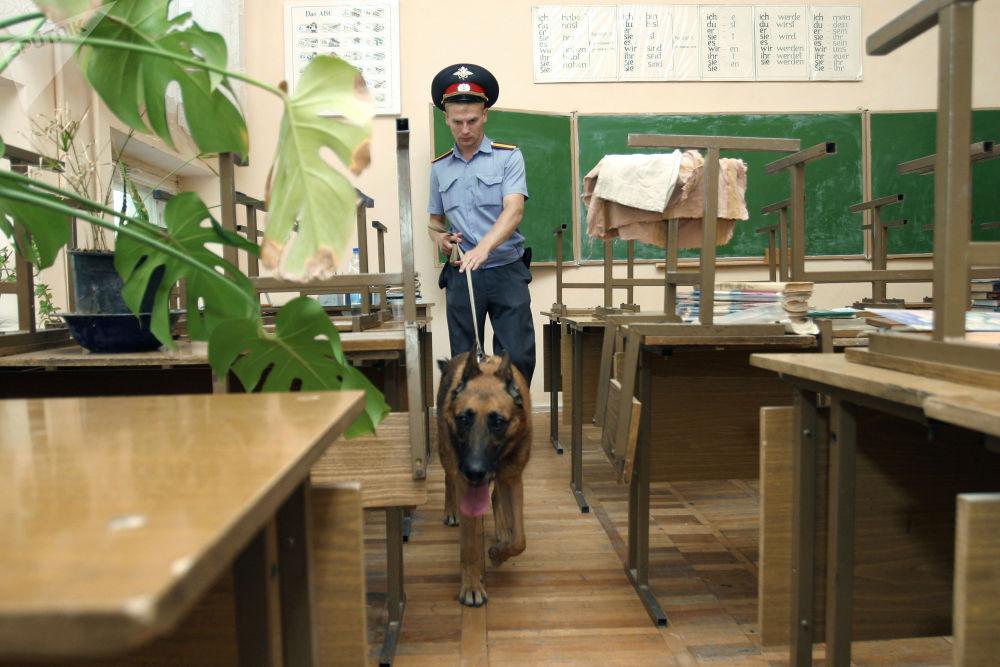 尽管科技在不断进步,但警犬仍是不可替代的帮手:它们协助搜查爆炸物品和毒品、制服危险罪犯,并参与救援行动。
