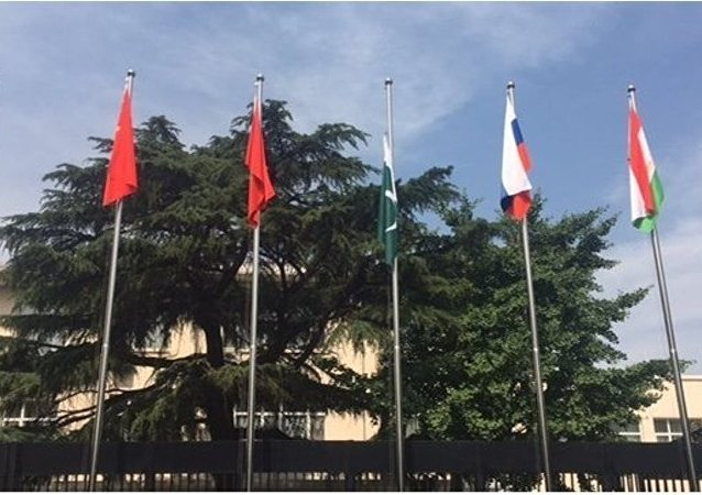 上合組織地區反恐機構:印巴兩國執法機構開始參與上合組織工作