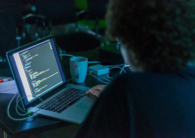 普京: IT公司应使用国产软件