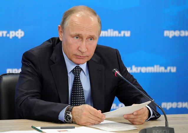 普京:大部分俄罗斯汽车制造企业适应外部约束