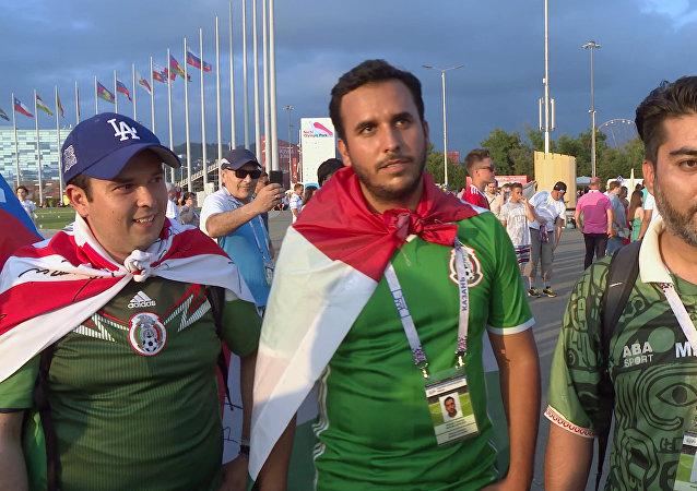 2018年世界杯免費車票的預訂已經開始