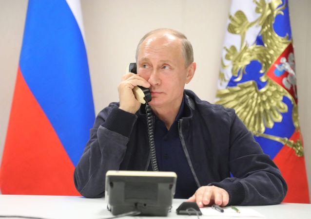 普京与巴林国王讨论了去年9月在莫斯科会谈期间达成协议的实施情况