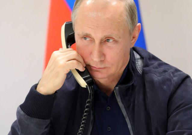克宫消息称,普京同卡塔尔埃米尔举行了电话交谈。