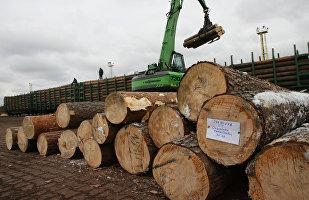 2017年俄罗斯对华木材出口量上涨