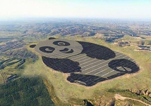 中国建成全球首座熊猫电站